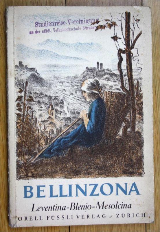 Bellinzona und seine Täler.