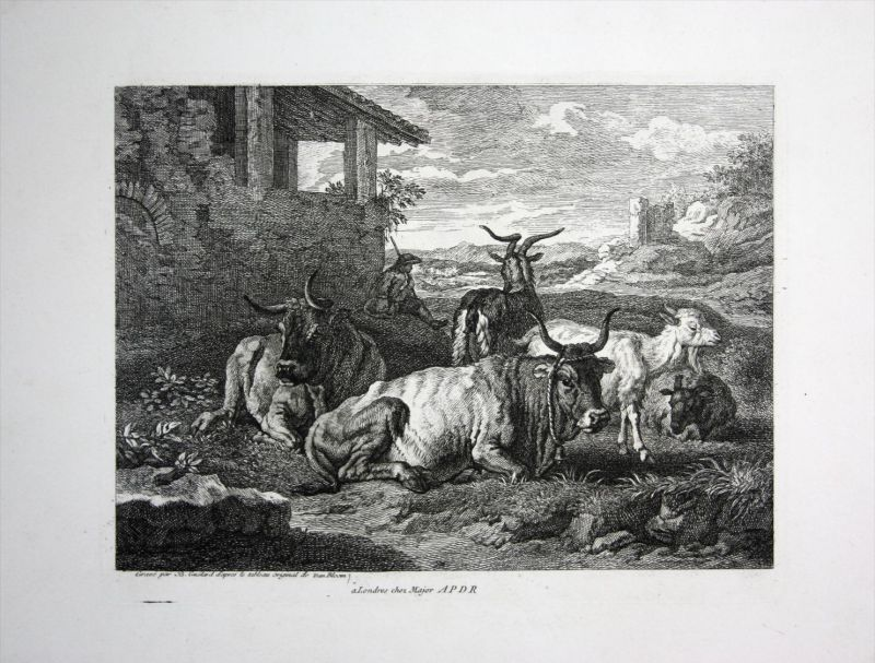 Rinder Herde Ziegen Tiere cow goats Kupferstich engraving 0