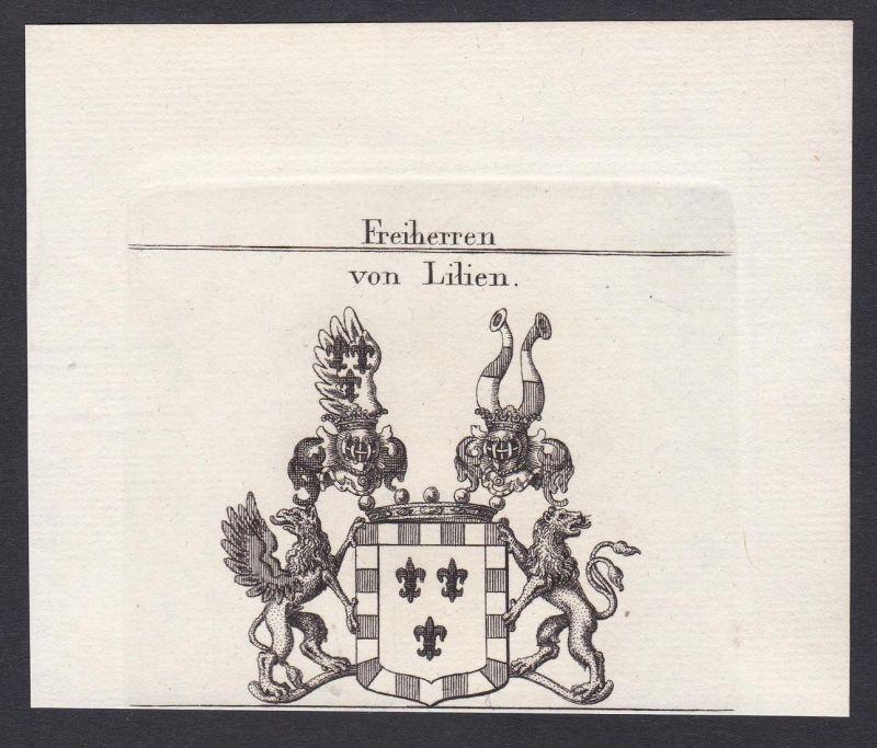 Freiherren von Lilien - Lilien Westfalen Wappen Adel coat of arms heraldry Heraldik Kupferstich antique print
