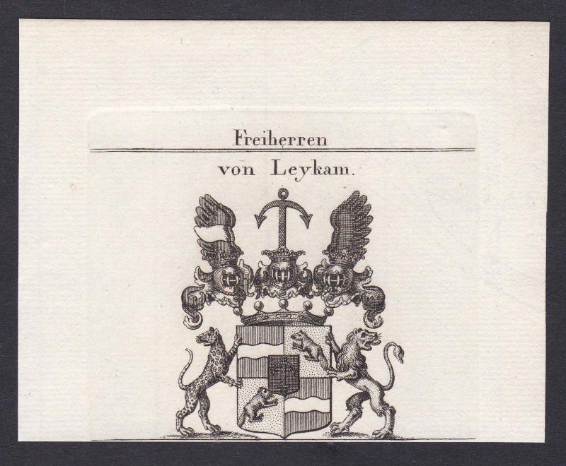 Freiherren von Leykam - Leykam Wappen Adel coat of arms heraldry Heraldik Kupferstich antique print