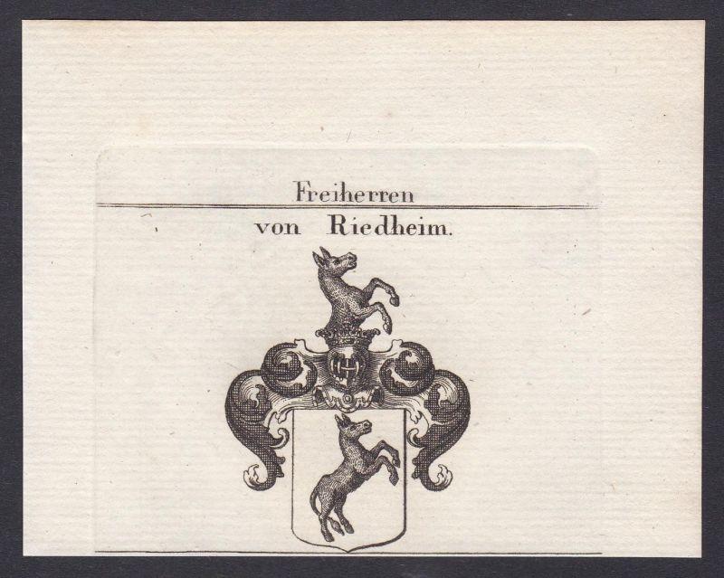 Freiherren von Riedheim - Riedheim Bayern Schwaben Wappen Adel coat of arms heraldry Heraldik Kupferstich anti