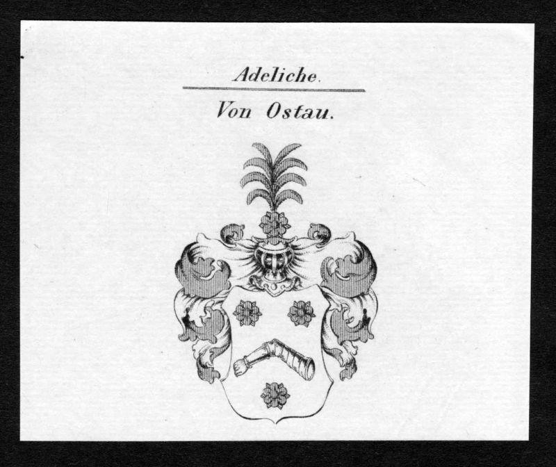 Von Ostau - Ostau Wappen Adel coat of arms Kupferstich antique print heraldry Heraldik