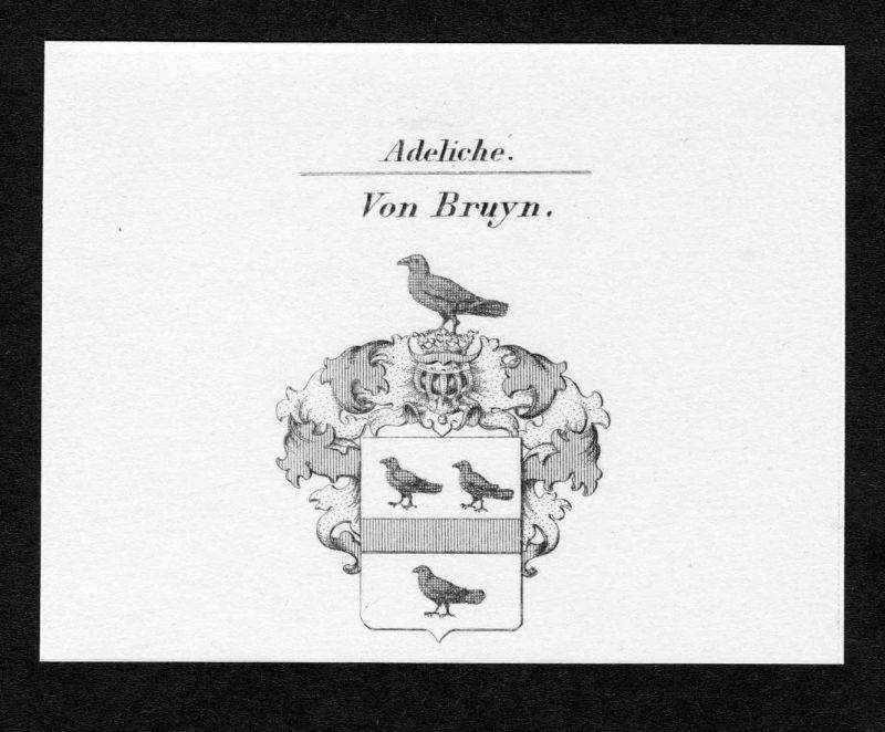 Von Bruyn - Bruyn Wappen Adel coat of arms Kupferstich antique print heraldry Heraldik