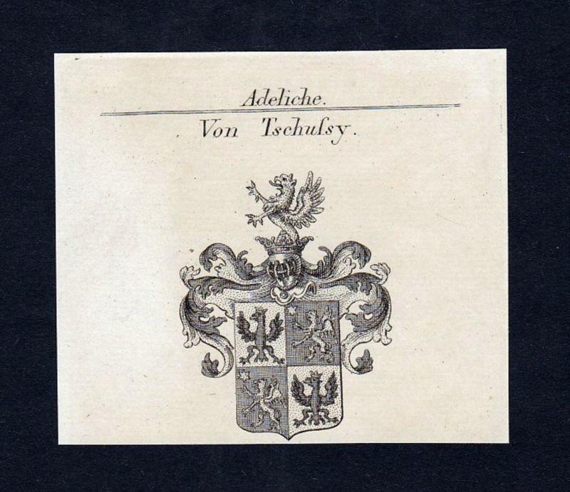 Von Tschussy - Tschussy Wappen Adel coat of arms heraldry Heraldik Kupferstich engraving