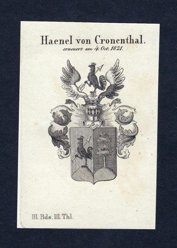 Haenel von Cronenthal - Haenel Cronenthal Erich Wappen Adel coat of arms heraldry Heraldik Kupferstich engravi