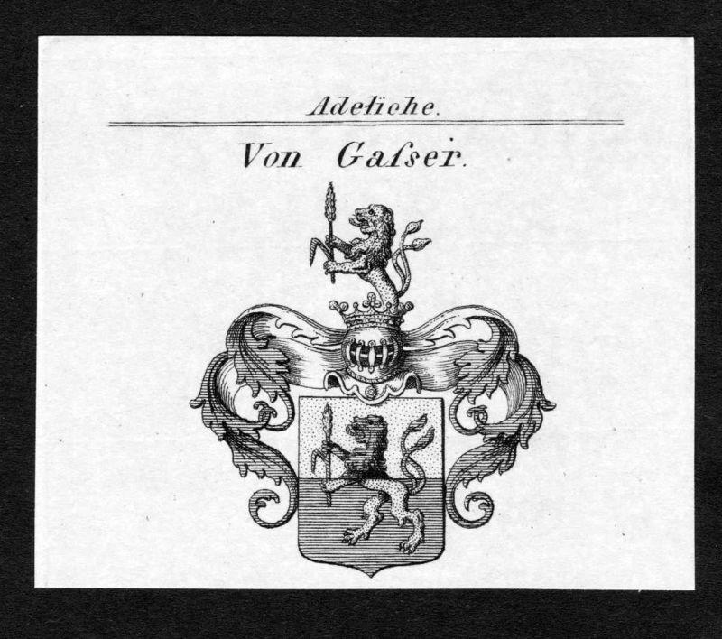 Von Gasser - Gasser Wappen Adel coat of arms Kupferstich antique print heraldry Heraldik