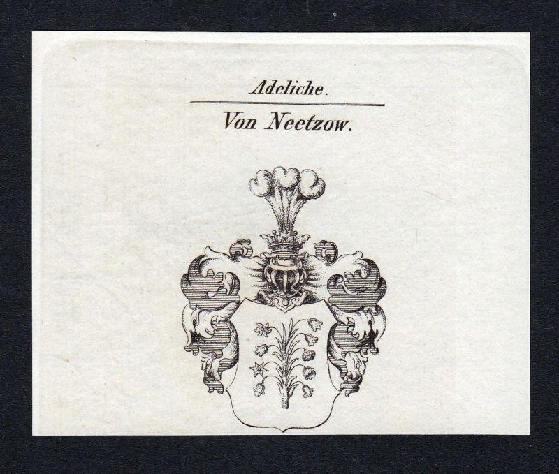 Von Neetzow - Neetzow Wappen Adel coat of arms Kupferstich antique print heraldry Heraldik