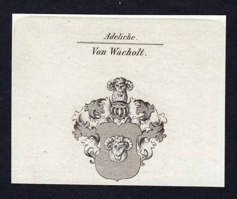Von Wacholt - Wachholtz Wacholtz Wacholt Wacholz Wappen Adel coat of arms Kupferstich antique print heraldry H