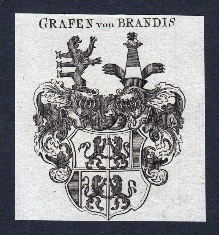 Grafen von Brandis - Brandis Schweiz Wappen Adel coat of arms heraldry Heraldik Kupferstich engraving