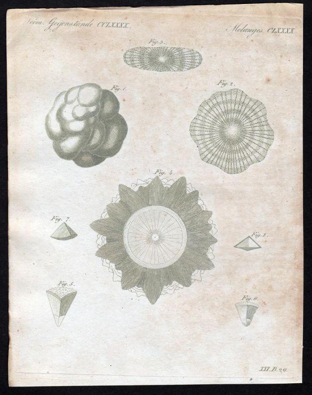 Verm. Gegenstände CCLXXXX - Hagel hail Kupferstich Bertuch antique print Hagelsteine