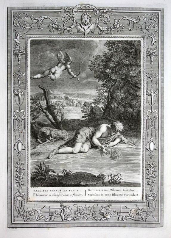 Narcissus in eine Blumme verändert - Narcissus Narziss Blume Greek Mythologie mythology Kupferstich engraving