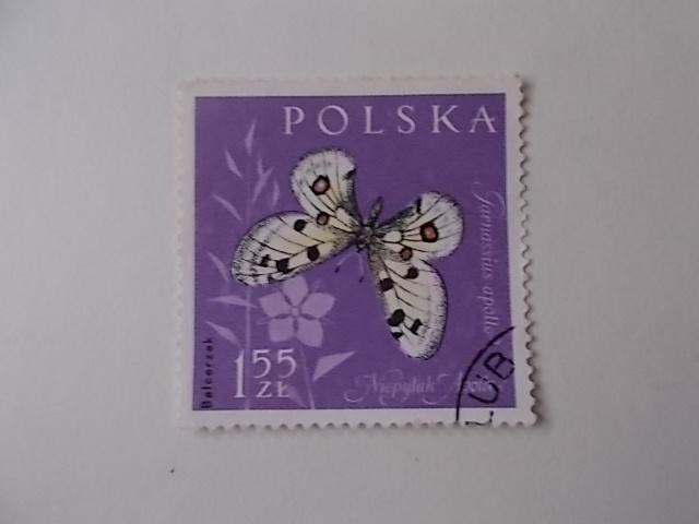 Polen Nr 1286 gestempelt