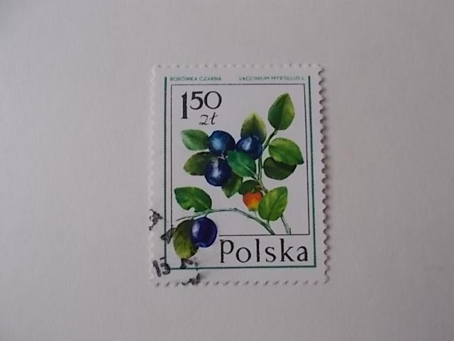 Polen Nr 2490 gestempelt