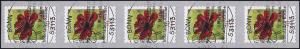 3197 Blume 70 Cent sk aus 500-Rolle 5er-Streifen mit GERADER Nummer, EV-O Bonn