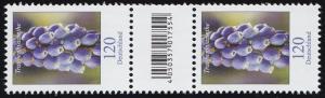 3447 Traubenhyazinthe 120 Cent, Paar mit Nummer, Codierfeld, ohne Nummer **