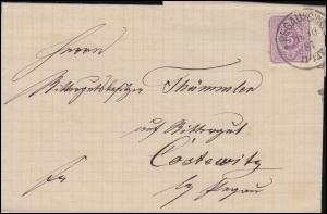 40 Ziffer 5 Pfennig EF auf Brief PEGAU/SACHSEN 11.10.1887 nach Costewitz/Pegau