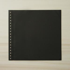 LINDNER Omnia Einsteckblatt 01 schwarz, 1 Streifen