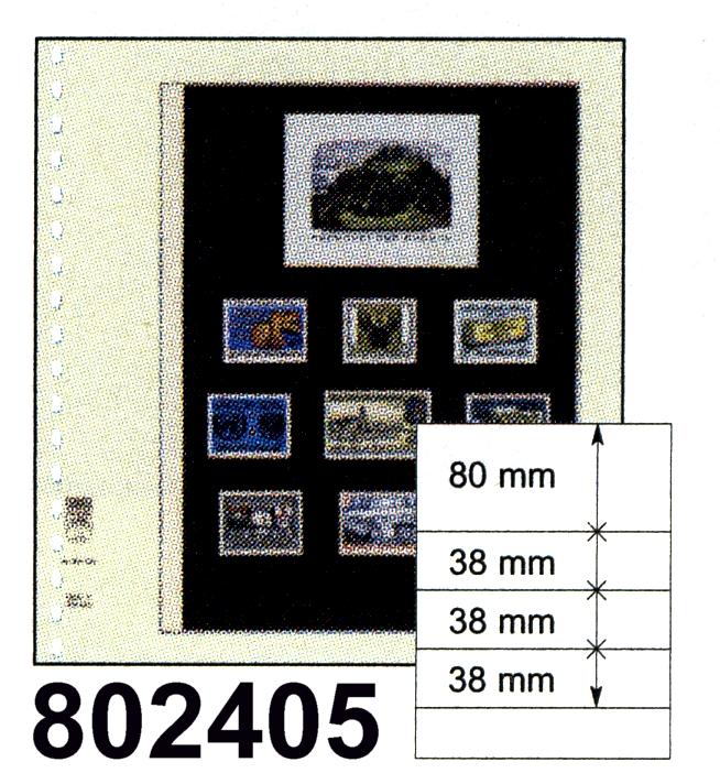 LINDNER-T-Blanko - Einzelblatt 802 405 0
