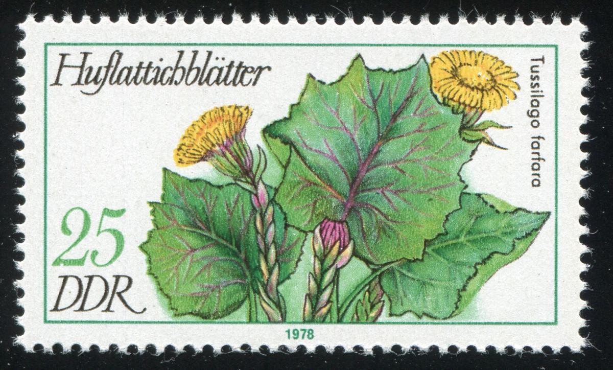 2290 Arzneipflanze 25 Pf: Kerbe unten in der 2 bei der 25, Feld 3 ** 1