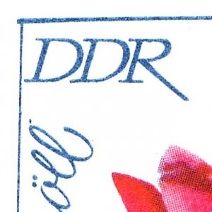 MH 6 I 1a Rosenausstellung - PLF 3.HBl/Feld 2: Punkt hinter Knöll **