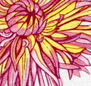 2437 Gartenbauausstellung 25 Pf mit PLF: Blütenblatt gebrochen, Feld 5 **