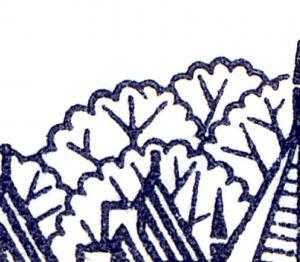 22Ih MH BuS 1980 Buchdruck - mit PLF IV ** postfrisch