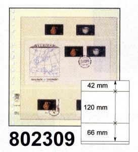 LINDNER-T-Blanko-Blätter 802 309 - 10er-Packung