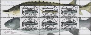 HBl. 49 Fische als Zusammendruck UNGEFALTET zentrische EV-O Bonn 6.8.15