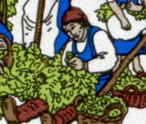 1999I Hopfenanbau - 10er-Bogen mit PLF I brauner Fleck im Hopfen, Feld 1, **