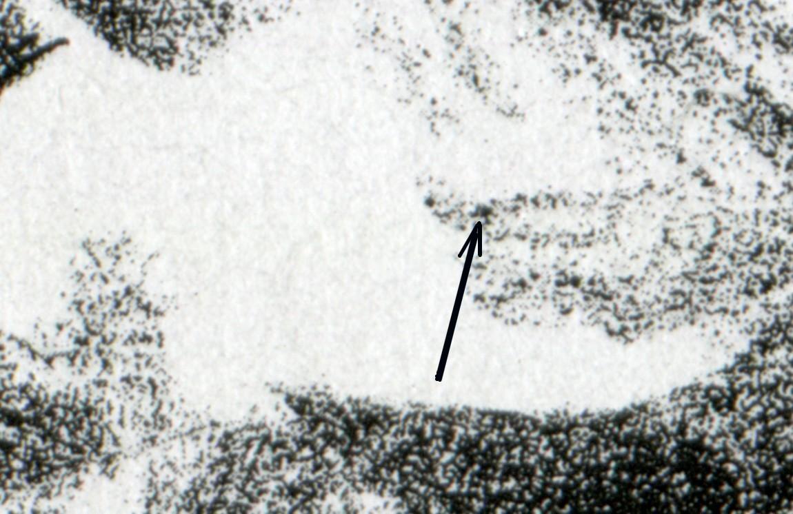 1855 Europa 100 Pf - 10er-Bogen mit PLF schwarzer Fleck im Haar, Feld 2, ** 0