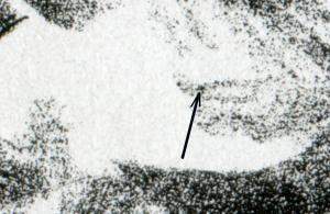 1855 Europa 100 Pf - 10er-Bogen mit PLF schwarzer Fleck im Haar, Feld 2, **