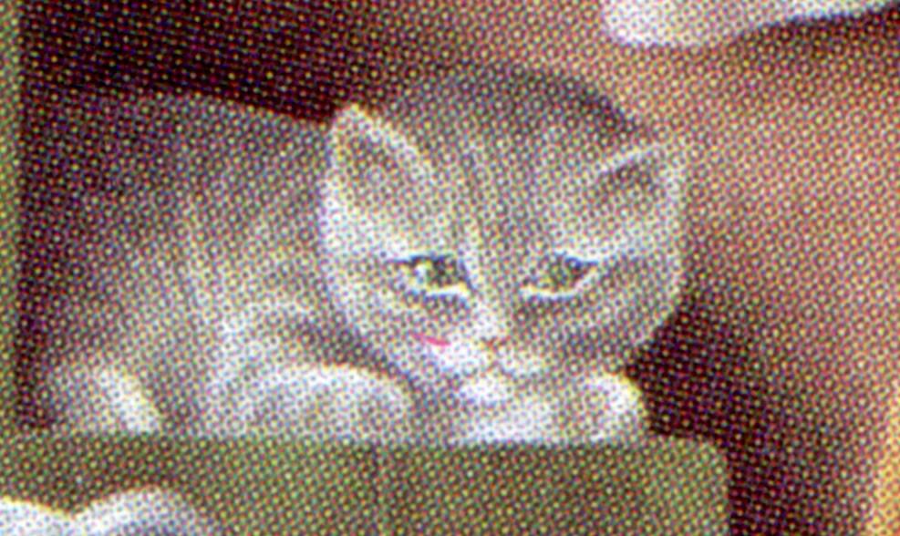 1775 Schimpf - 10er-Bogen mit PLF I roter Strich unter dem Auge, Feld 8 ** 0