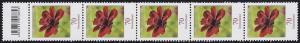 3189 Blume 70 Cent aus 500er-Rolle, 5er-Streifen mit Codierfeld -853 **