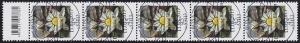 3303 Seerose 45 Cent aus 200er-Rolle, 5er-Streifen mit Codierfeld, ESSt Bonn