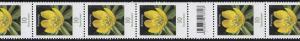 3314 Blume 10 Cent aus 200er-Rolle, 11er Rollenende mit 3 Codierfeldern **