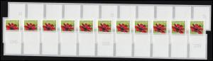3197 Schoko-Kosmee SELBSTKLEBEND 11er-Streifen - Nummern-Set **