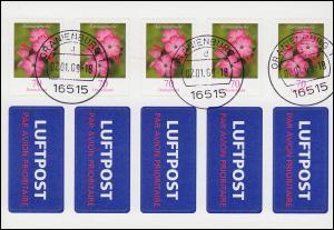FB 3 Kartäusernelke Folienblatt mit Luftpost-Aufkleber ET-O ORANIENBURG 2.1.2009