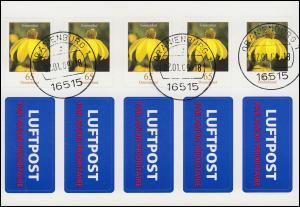 FB 2 Sonnenhut Folienblatt mit Luftpost-Aufkleber ET-O ORANIENBURG 2.1.2009