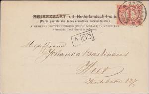 Firmenlochung/Perfin E.R. auf 50 Ziffer auf AK Tangerang ROTTERDAM 28.5.1901