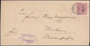 Württemberg 46 Ziffer 10 Pf EF auf Brief SPIEGELBERG 20.11.1889 nach Heilbronn