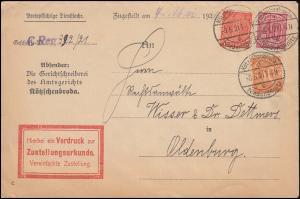 27+28+30 Dienstmarken auf Zustellungsurkude Kötzschenbroda-Niederlößnitz 3.5.21