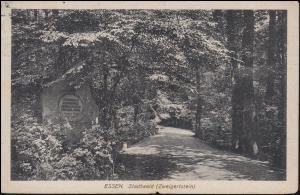 Ansichtskarte Stadtwald (Zweigerstein) ESSEN 3.8.20 nach Holland