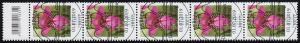3471 Wild-Gladiole 110 Cent, 5er-Streifen mit Codierfeld, ESSt Berlin 1.7.2019