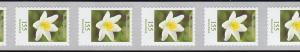 3484 Buschwindröschen 155 Cent sk aus 100er Rollenanfang mit Nummer 100-95-90 **