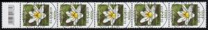 3472 Buschwindröschen 155 Cent aus 500er-Rolle, 5er-Streifen mit CF, ESSt Bonn