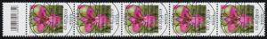 3471 Wild-Gladiole 110 Cent, 5er-Streifen mit Codierfeld, ESSt Bonn 1.7.2019