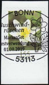 3484 Blume Buschwindröschen, selbstklebend aus FB 91, EV-O BONN 1.8.2019