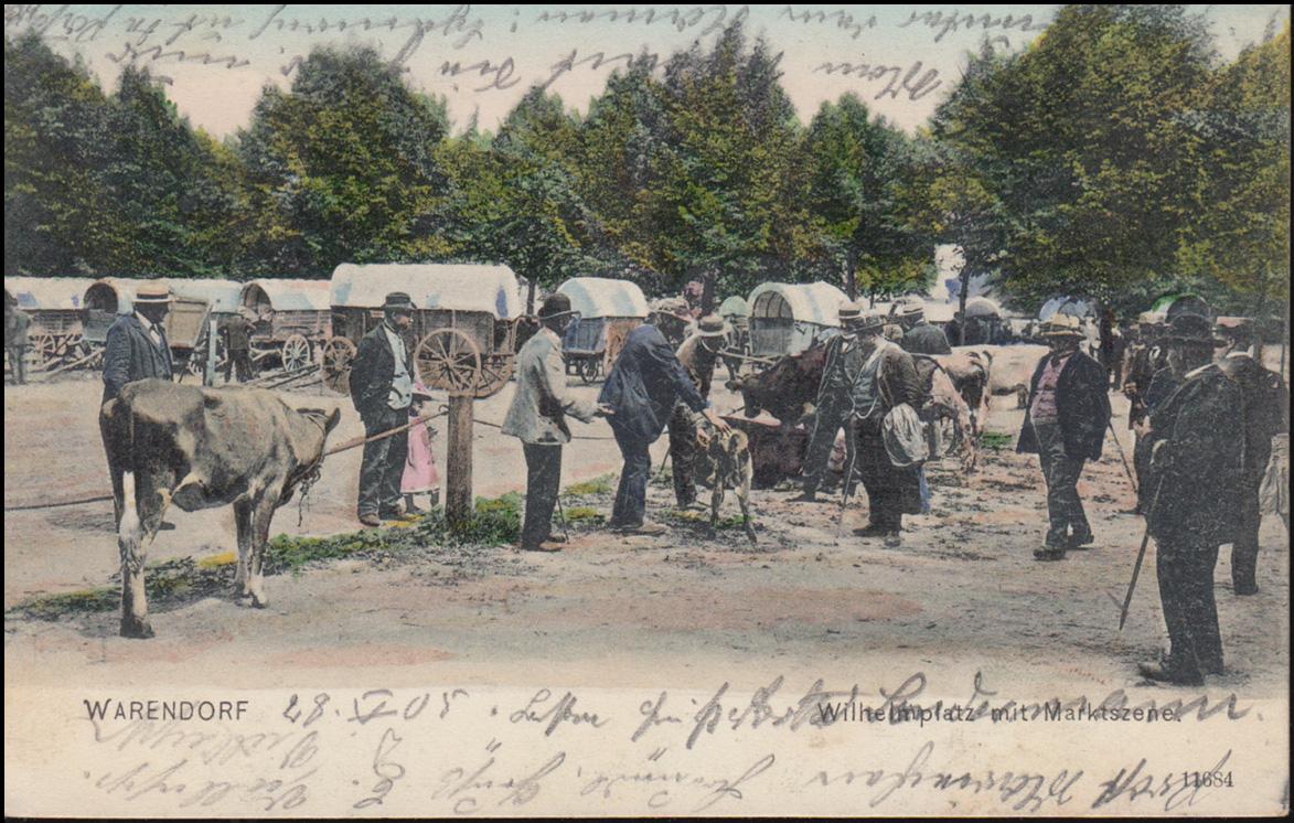 Ansichtskarte Wilhelmplatz mit Marktszene WARENDORF 29.5.1905 nach BREYELL 29.5. 0