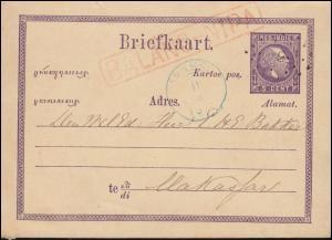 Niederländisch Indien Postkarte 5 Cent Rahmen-O BALANG-NIPA nach MAKASSAR 1875