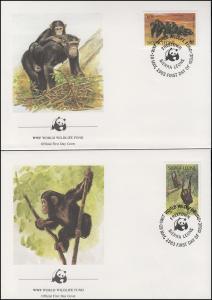 Sierra Leone WWF: Affen - Schimpansen 1983, 4 Werte auf 4 FDC FREETOWN 19.5.1983